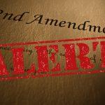First Anti Self-Defense Bills Introduced